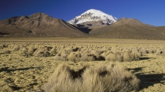ey-sajama-national-park-bolivia_1366x768_75280.jpg